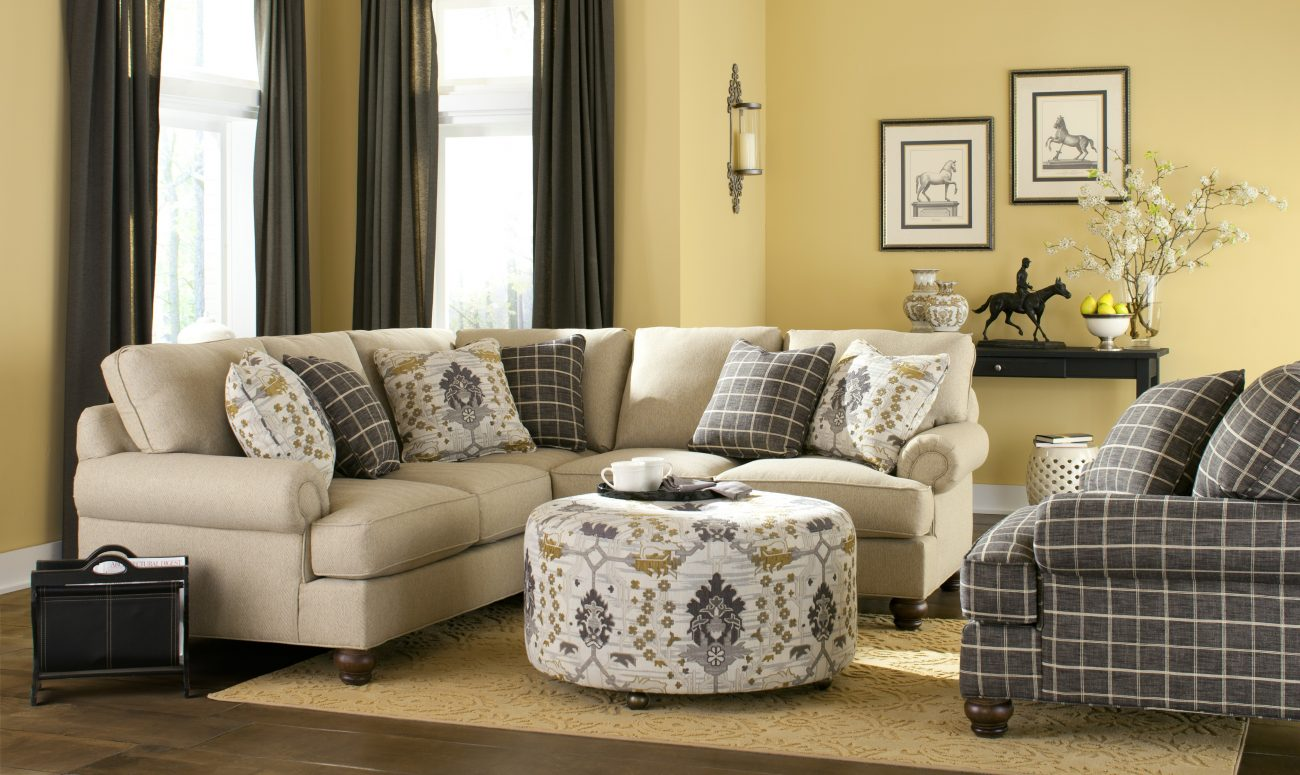 Living Room Furniture And Design The Show Place